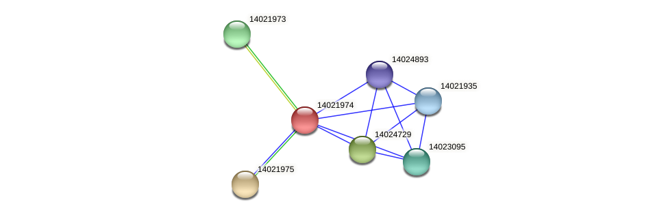 mll1145 protein (Mesorhizobium loti) - STRING interaction network