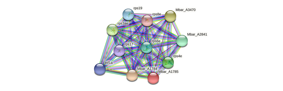 Mbar_A1785 protein (Methanosarcina barkeri) - STRING interaction network