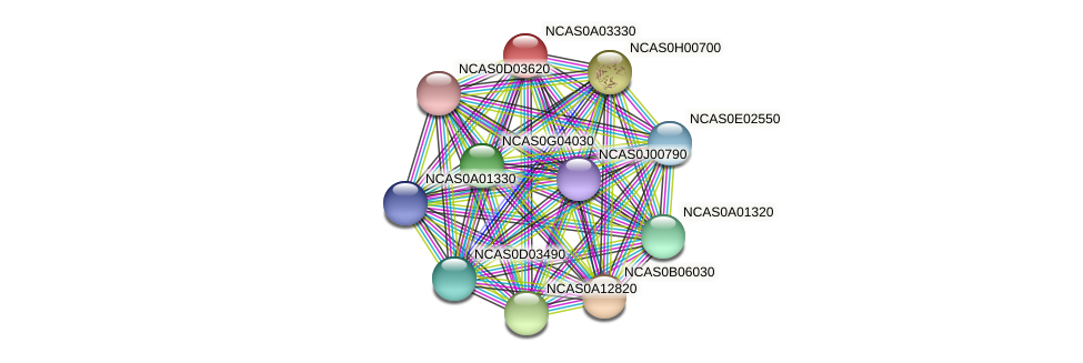 XP_003673280.1 protein (Naumovozyma castellii) - STRING interaction network