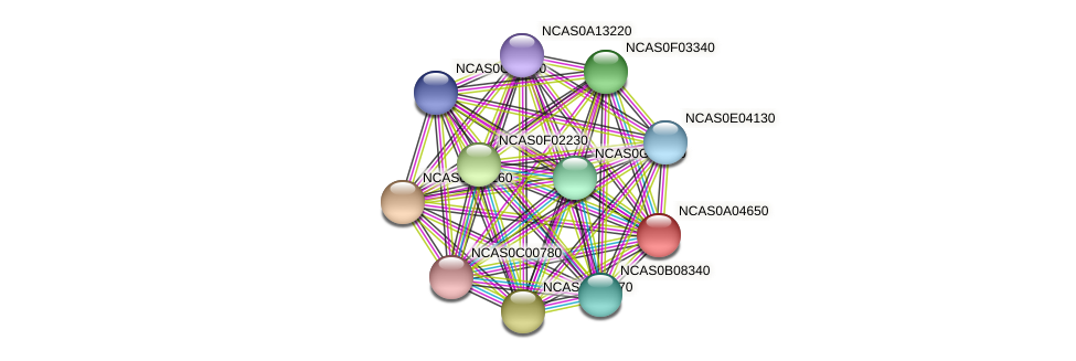 XP_003673410.1 protein (Naumovozyma castellii) - STRING interaction network
