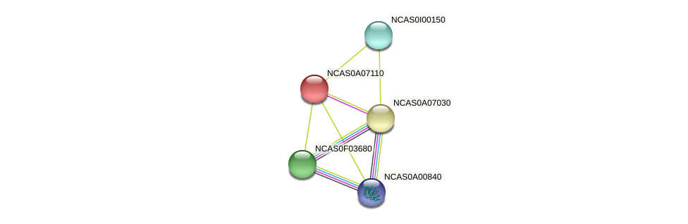 XP_003673650.1 protein (Naumovozyma castellii) - STRING interaction network