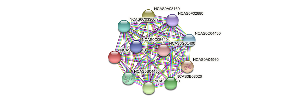 XP_003673693.1 protein (Naumovozyma castellii) - STRING interaction network