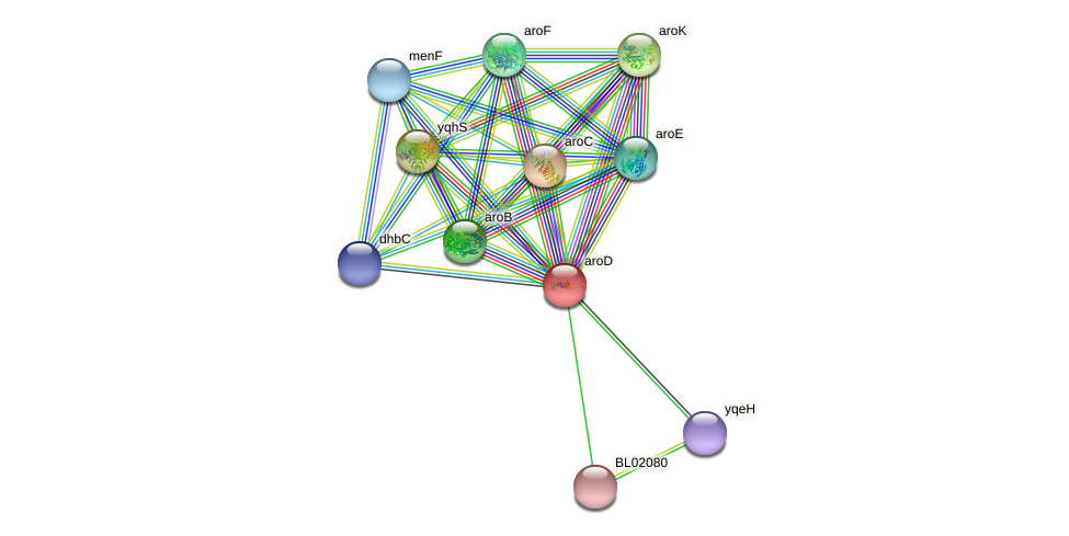aroE protein (Bacillus licheniformis) - STRING interaction network