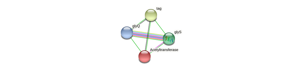 IL0008 protein (Idiomarina loihiensis) - STRING interaction network