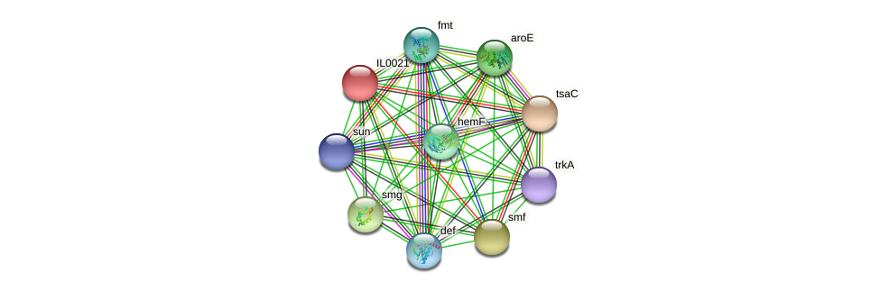 IL0021 protein (Idiomarina loihiensis) - STRING interaction network