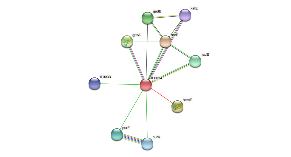 IL0034 protein (Idiomarina loihiensis) - STRING interaction network