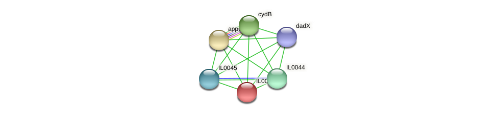 IL0043 protein (Idiomarina loihiensis) - STRING interaction network