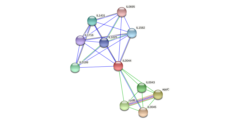 IL0044 protein (Idiomarina loihiensis) - STRING interaction network