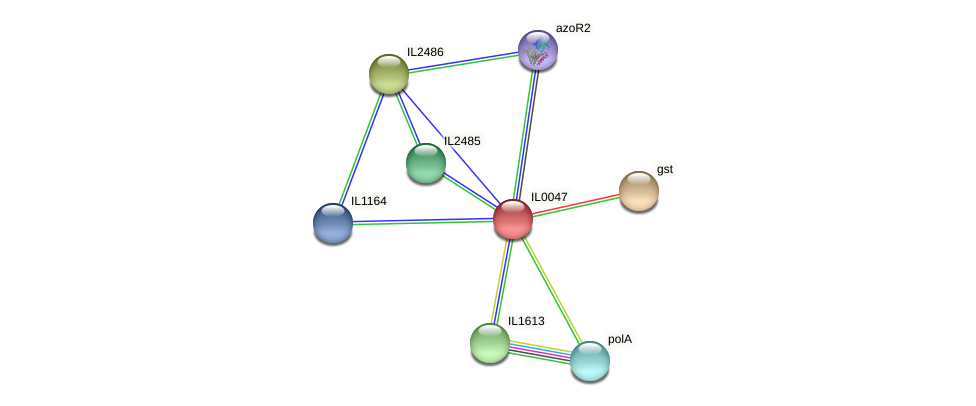 IL0047 protein (Idiomarina loihiensis) - STRING interaction network