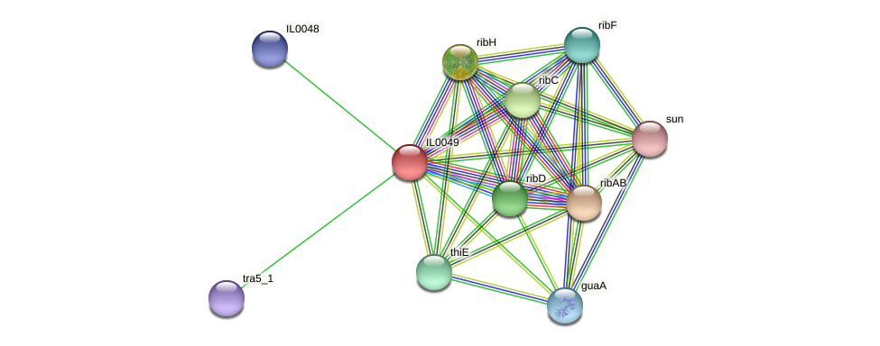 IL0049 protein (Idiomarina loihiensis) - STRING interaction network