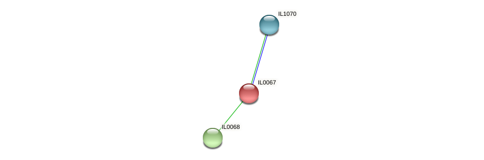 IL0067 protein (Idiomarina loihiensis) - STRING interaction network