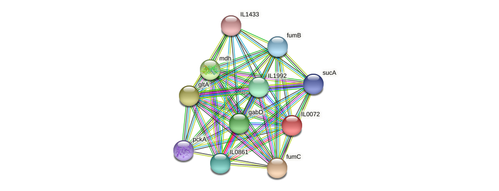 IL0072 protein (Idiomarina loihiensis) - STRING interaction network