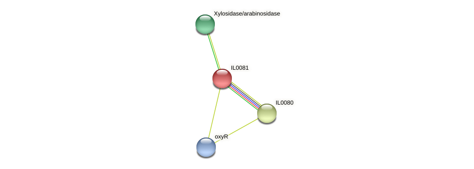 IL0081 protein (Idiomarina loihiensis) - STRING interaction network