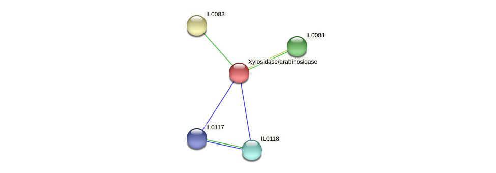 IL0082 protein (Idiomarina loihiensis) - STRING interaction network