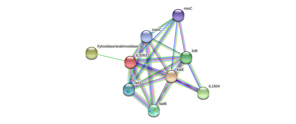 IL0083 protein (Idiomarina loihiensis) - STRING interaction network
