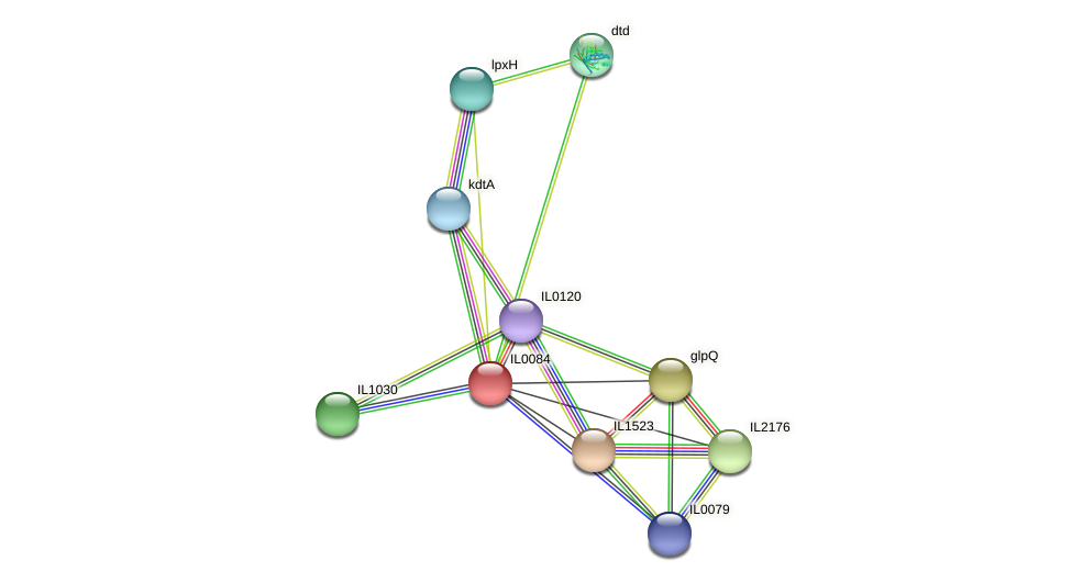 IL0084 protein (Idiomarina loihiensis) - STRING interaction network