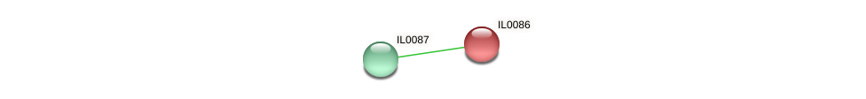 IL0086 protein (Idiomarina loihiensis) - STRING interaction network