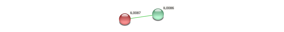 IL0087 protein (Idiomarina loihiensis) - STRING interaction network