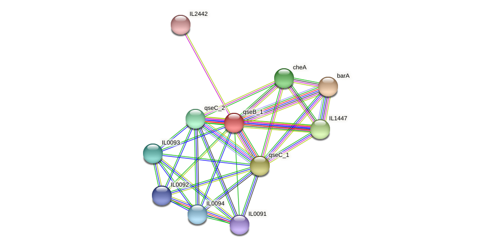 IL0095 protein (Idiomarina loihiensis) - STRING interaction network