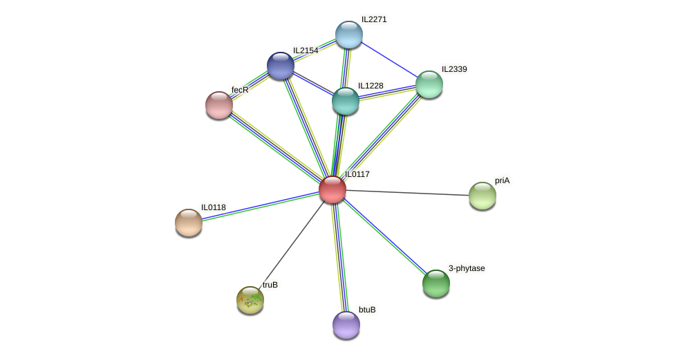 IL0117 protein (Idiomarina loihiensis) - STRING interaction network