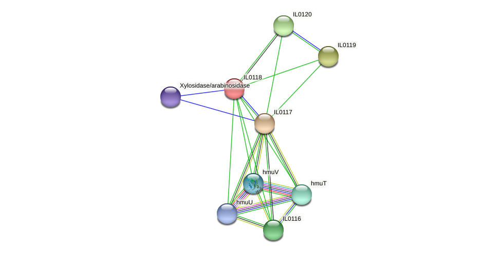 IL0118 protein (Idiomarina loihiensis) - STRING interaction network