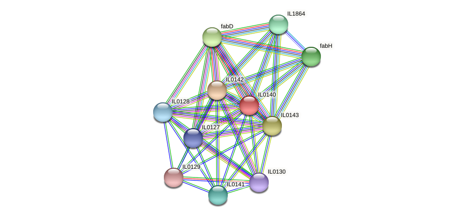 IL0140 protein (Idiomarina loihiensis) - STRING interaction network