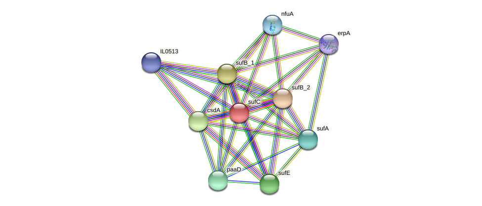 sufC protein (Idiomarina loihiensis) - STRING interaction network