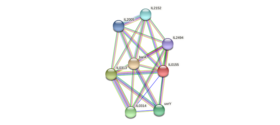 IL0155 protein (Idiomarina loihiensis) - STRING interaction network