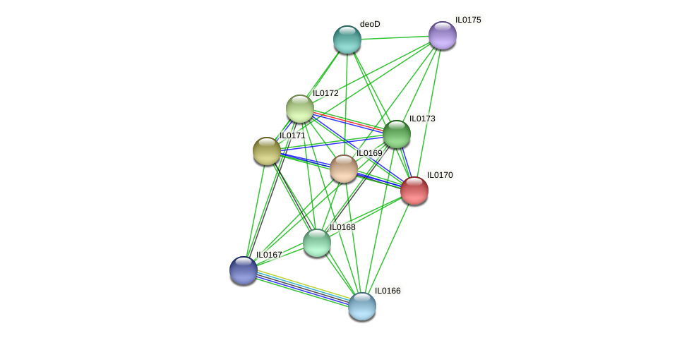 IL0170 protein (Idiomarina loihiensis) - STRING interaction network