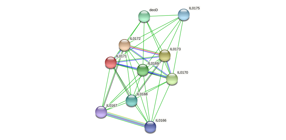 IL0171 protein (Idiomarina loihiensis) - STRING interaction network