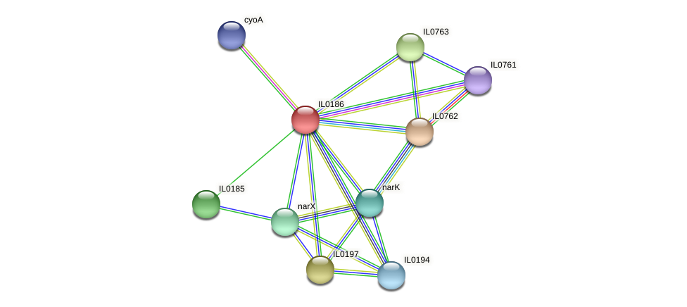 IL0186 protein (Idiomarina loihiensis) - STRING interaction network