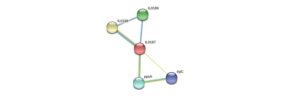 IL0187 protein (Idiomarina loihiensis) - STRING interaction network