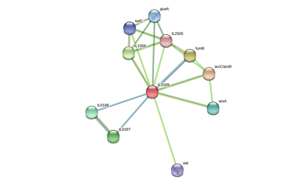 IL0189 protein (Idiomarina loihiensis) - STRING interaction network