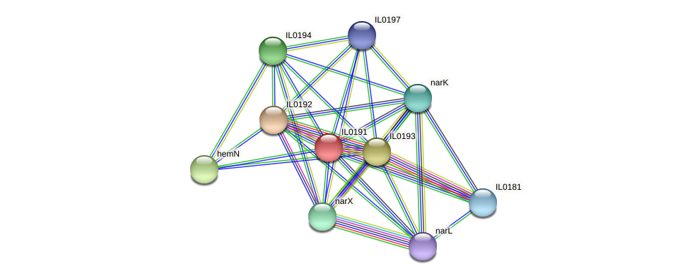 IL0191 protein (Idiomarina loihiensis) - STRING interaction network