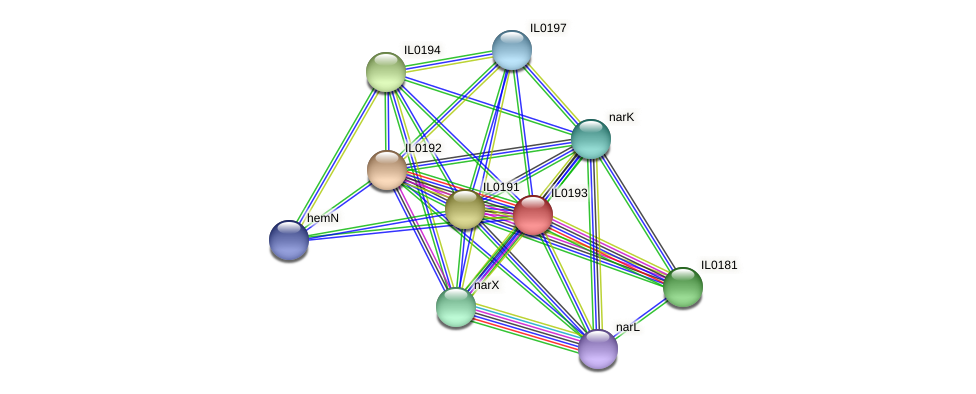 IL0193 protein (Idiomarina loihiensis) - STRING interaction network