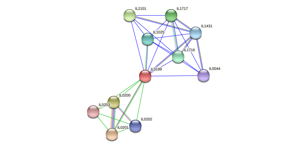 IL0199 protein (Idiomarina loihiensis) - STRING interaction network