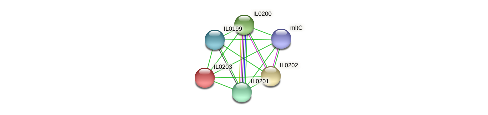 IL0203 protein (Idiomarina loihiensis) - STRING interaction network