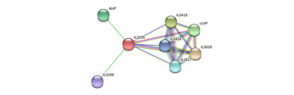 IL0205 protein (Idiomarina loihiensis) - STRING interaction network