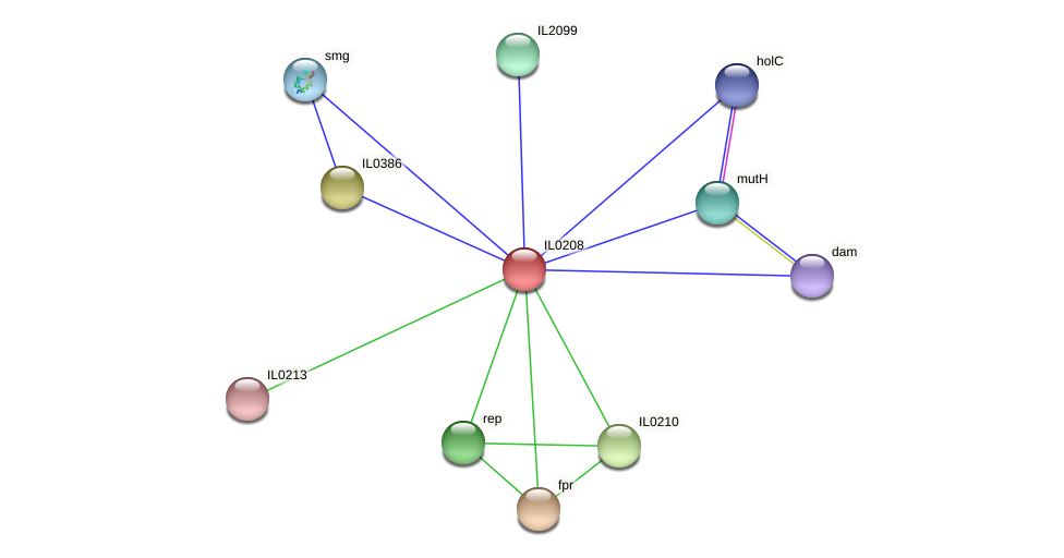 IL0208 protein (Idiomarina loihiensis) - STRING interaction network