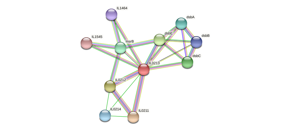 IL0213 protein (Idiomarina loihiensis) - STRING interaction network