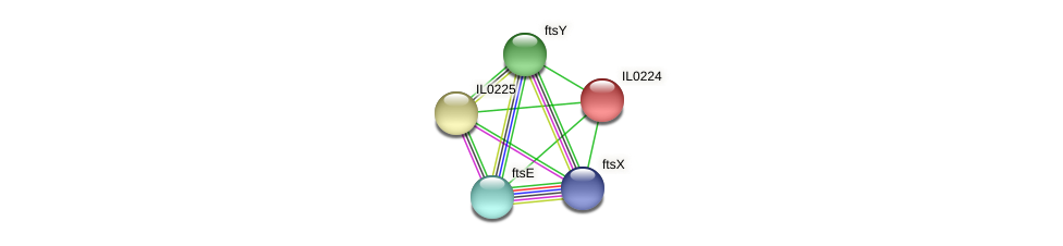 IL0224 protein (Idiomarina loihiensis) - STRING interaction network
