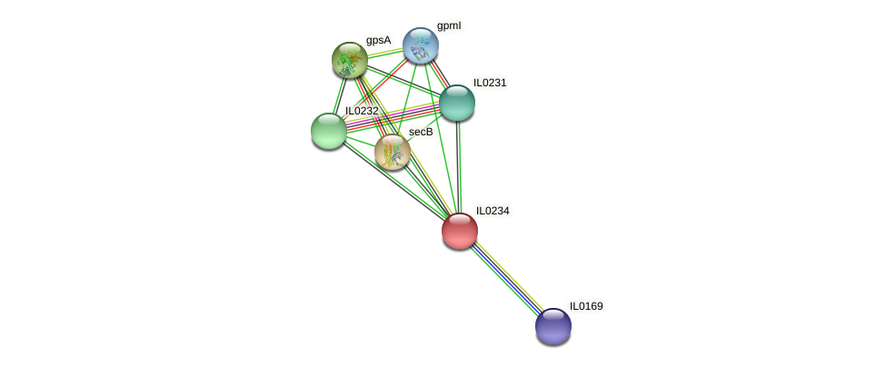 IL0234 protein (Idiomarina loihiensis) - STRING interaction network