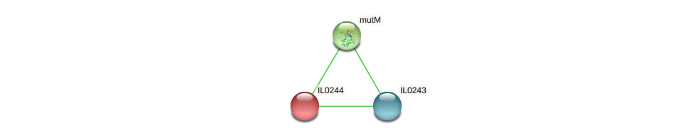 IL0244 protein (Idiomarina loihiensis) - STRING interaction network