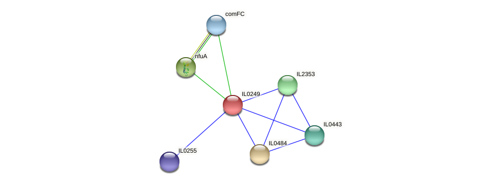 IL0249 protein (Idiomarina loihiensis) - STRING interaction network