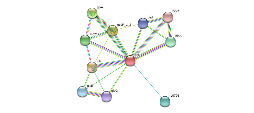 kbl protein (Idiomarina loihiensis) - STRING interaction network