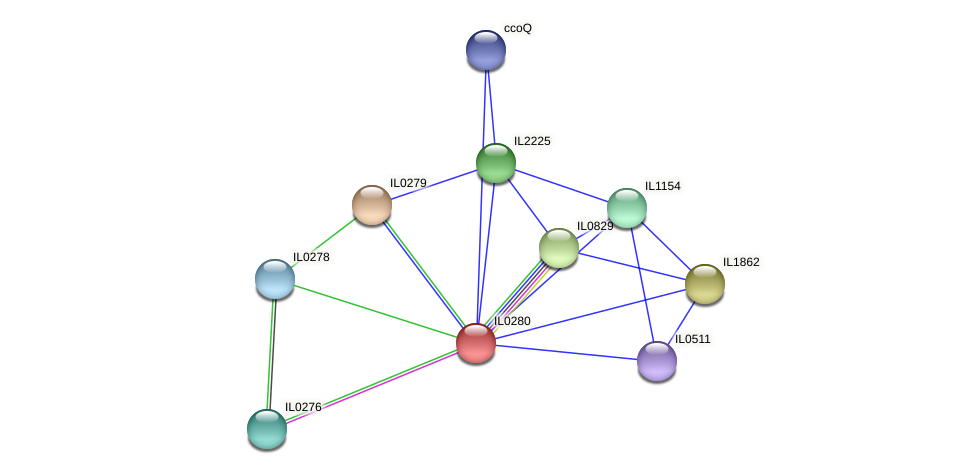 IL0280 protein (Idiomarina loihiensis) - STRING interaction network