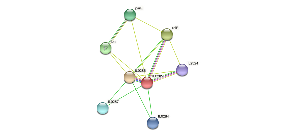 IL0285 protein (Idiomarina loihiensis) - STRING interaction network