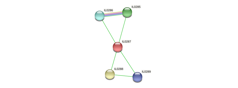 IL0287 protein (Idiomarina loihiensis) - STRING interaction network