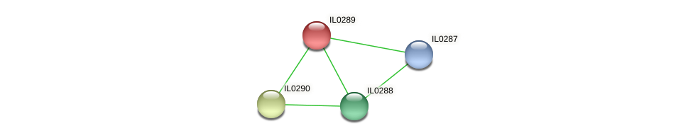 IL0289 protein (Idiomarina loihiensis) - STRING interaction network