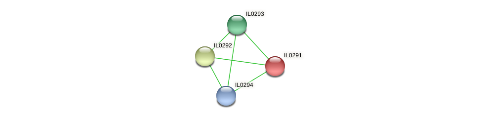 IL0291 protein (Idiomarina loihiensis) - STRING interaction network